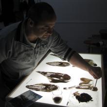 Travail de peinture sur verre au dessus d'une plaque lumineuse